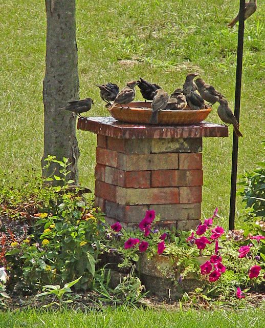 while cleaning the garage, I saw that I had a lot of bricks and things left over from various projects. I decided to stack them and make a birdbath stand.  ~~  NESTING PLACE: Birdbaths