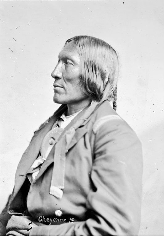 Portrait (Profile) of Hah-Ket-Home-Mah (Little Robe), Cheyenne, in Partial Native Dress and Military Coat and with Cross Necklace - Gurney - 1871
