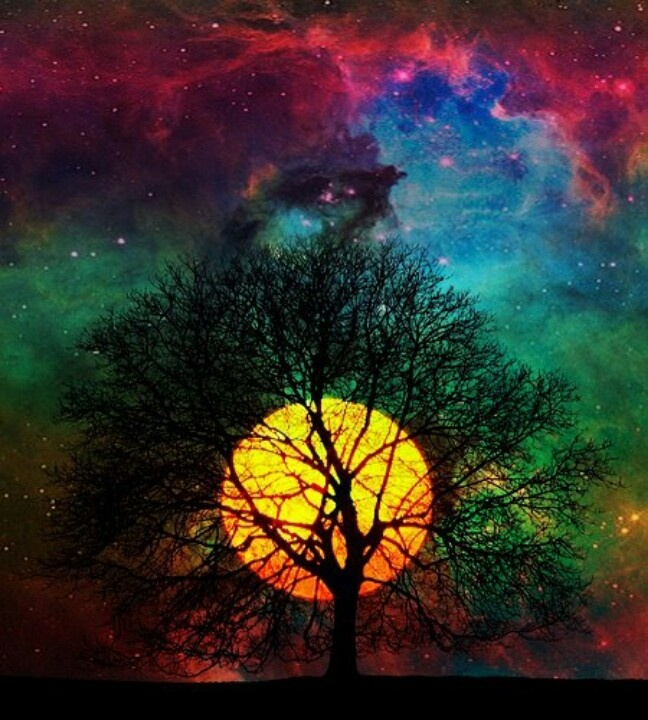 20 best really coolcolorful artwork images on pinterest i really love all of the different colors in this picture i love how you can see the silhouette of the tree and how the sun is positioned right in the voltagebd Images