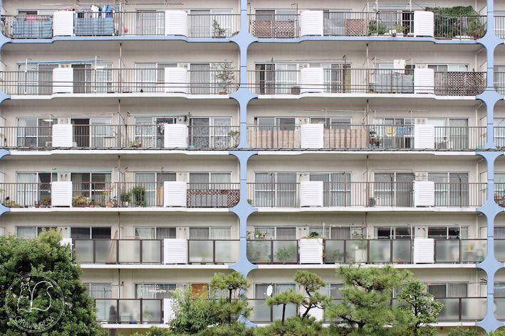 Oravanpesä: Japani 2013, Tokio