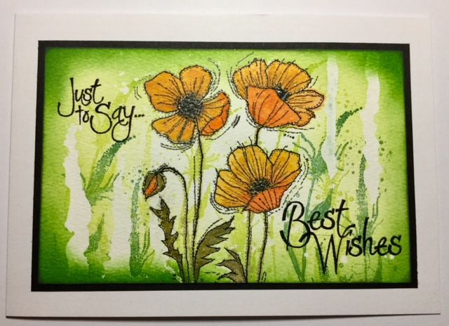 Feb 2018 card making masterclass. Resist techniques. Woodware Stitched Poppies stamp.