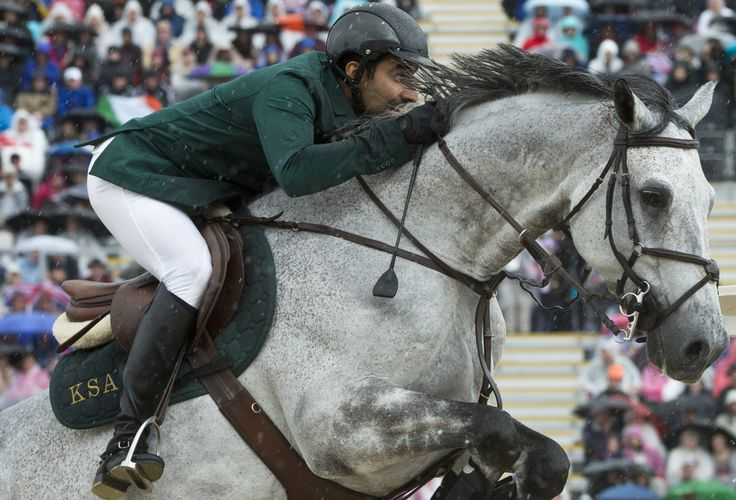 Though not a breed, Studbook Zangersheide is a breeding operation-turned-studbook that specializes in show jumping horses and was founded in 1992. Last year, Zangersheide placed 10th in the World Breeding Federation for Sport Horse's ranking of studbooks in jumping. HRH Prince Abdullah al Saud of Saudi Arabia rode his Zangersheide mount, Davos, to a bronze medal in this year's team jumping competition.