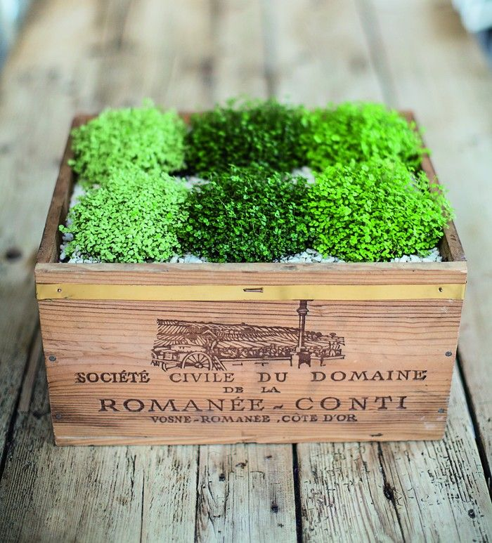 Isabelle Palmer, The House Gardener, Wood Crate Planter