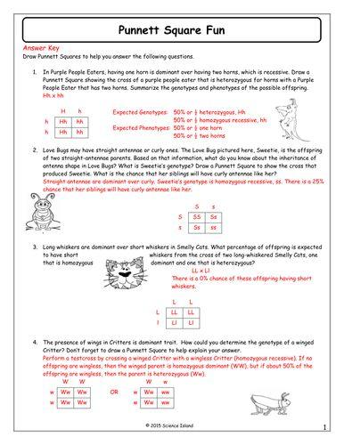 13 Punnett Square Fun Answer Key Docx Punnett Squares Genetics