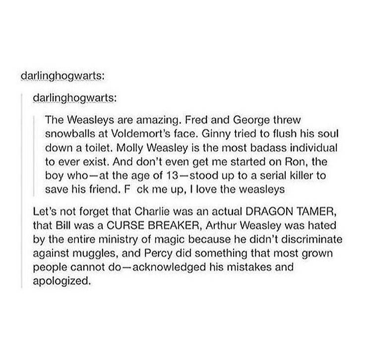 Seriously, the Weasley's are freaking badass