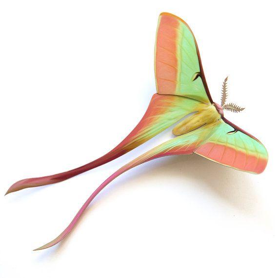Dubernadi chinois lune papillon Papercut décoration