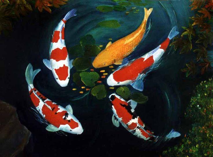 15 best jj paints koi images on pinterest japanese koi for Pool koi aquatics ltd