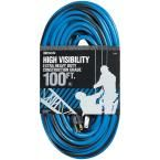 100 ft. 12/3 Sjtw High Visibility Outdoor Extension Cord, Blue/Black