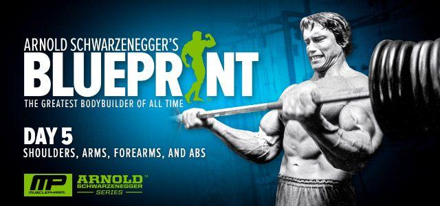 Arnold schwarzenegger blueprint workout day 15 viewyoga arnold schwarzenegger blueprint trainer day 5 malvernweather Images