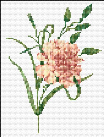 carnation free cross stitch pattern