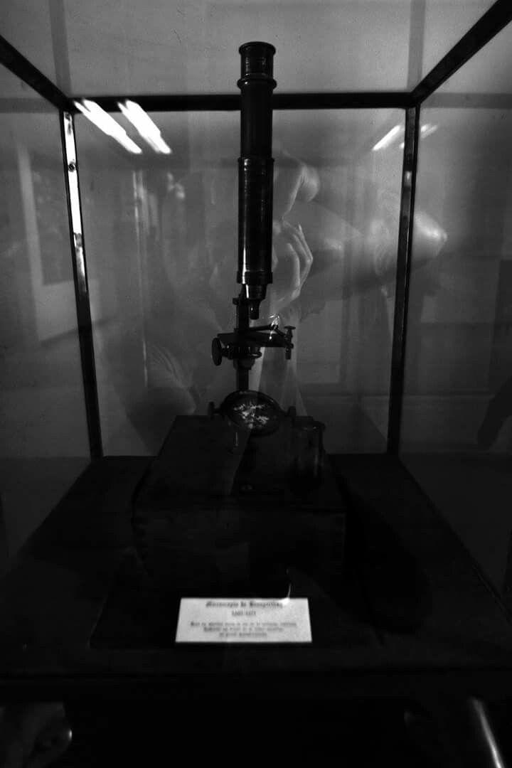 Auto retrato, junto al primer microscopio  del mundo