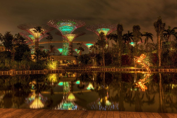 Дмитрий Захаров  Gardens by the Bay
