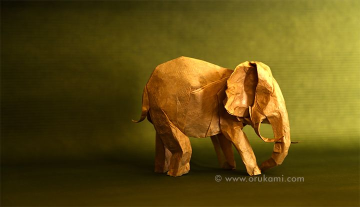 Artur Biernacki Origami Elephant. Folded and photographed by Himanshu Agrawal.