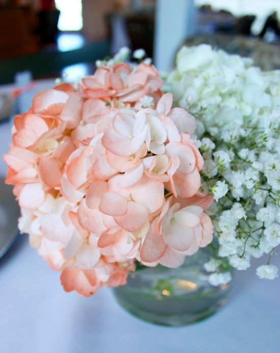 Georgia Peach Bridal Shower: Peach Hydrangeas