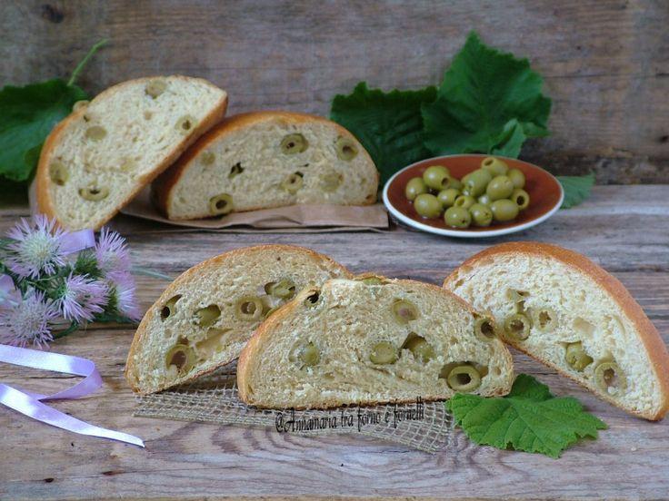 Pane+alle+olive+verdi