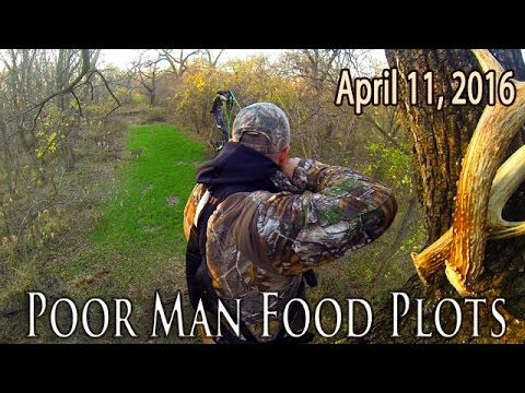 Small Food Plots for Deer Hunting - Tips & Tricks - YouTube