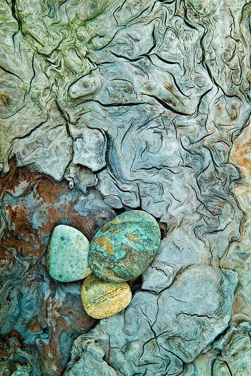 Beach Rocks and weathered driftwood, Mark Graf