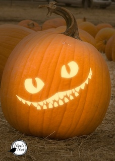 thomas pumpkin template - 25 best ideas about cat pumpkin carving on pinterest