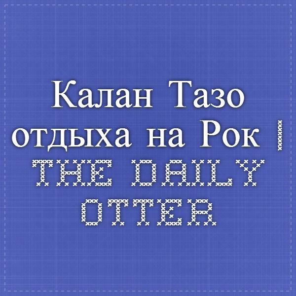 Калан Тазо отдыха на Рок | The Daily Otter