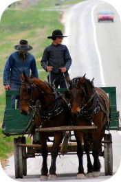 City of Lawrenceburg, Tn. - #Amish Country