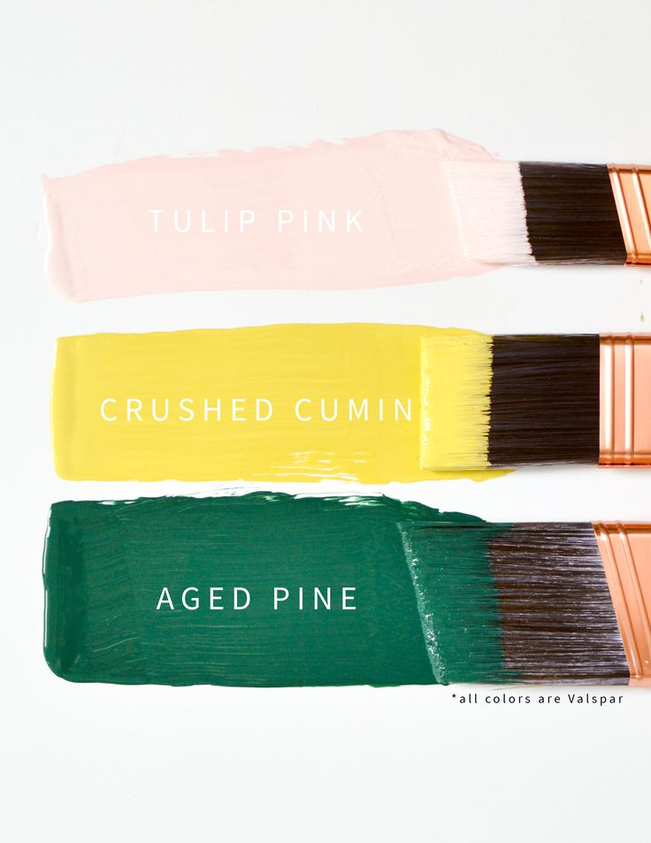 Pink Yellow and Green Colorway