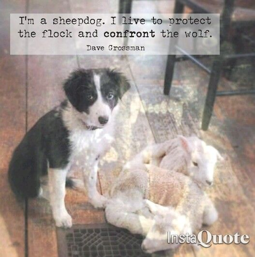 Police quote Dave Grossman