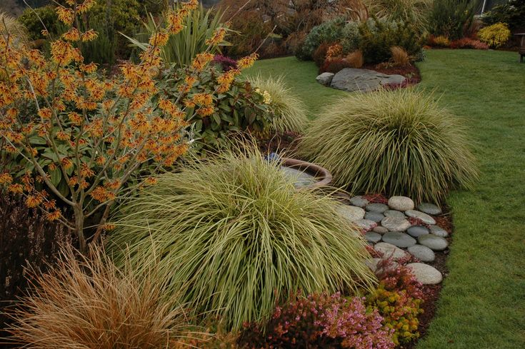 1000 images about plant combinations on pinterest for Planting schemes with grasses