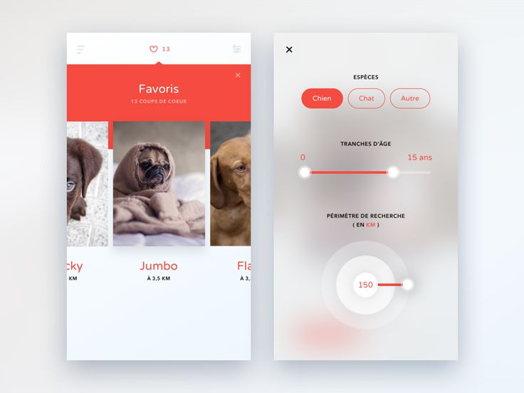 Pet Adoption App | Favorites & Filters by Nicolas Meuzard