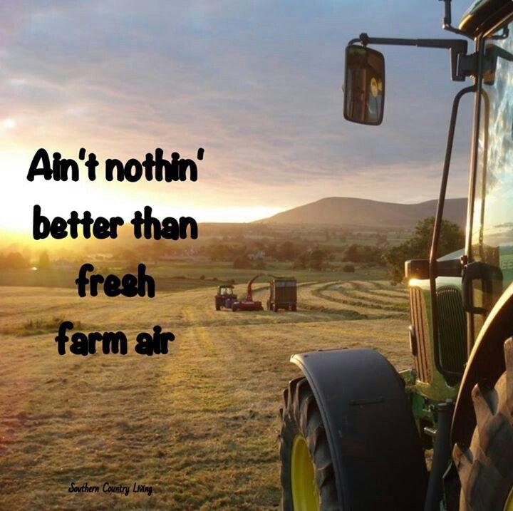 Fresh farm air.. tis the season