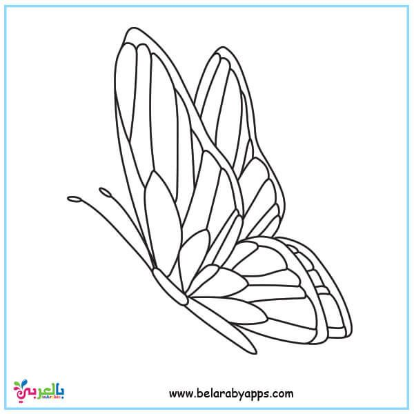 Butterfly Coloring Pages For Kids Preschool Belarabyapps Butterfly Coloring Page Coloring Pages For Kids Easy Butterfly Drawing