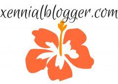Xennial Blogger