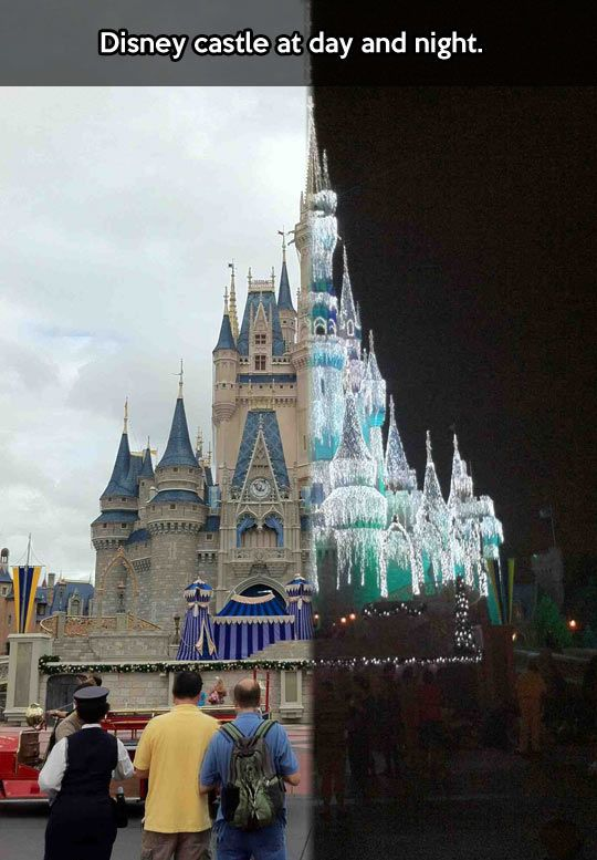 Night and day in Disneyland // funny pictures - funny photos - funny images - funny pics - funny quotes - #lol #humor #funnypictures