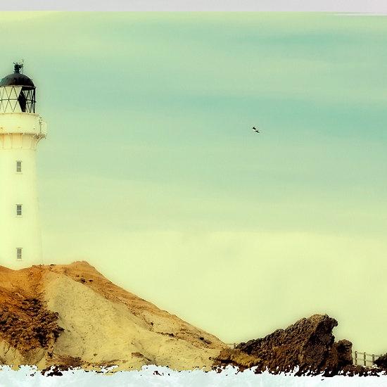 Castlepoint | New Zealand