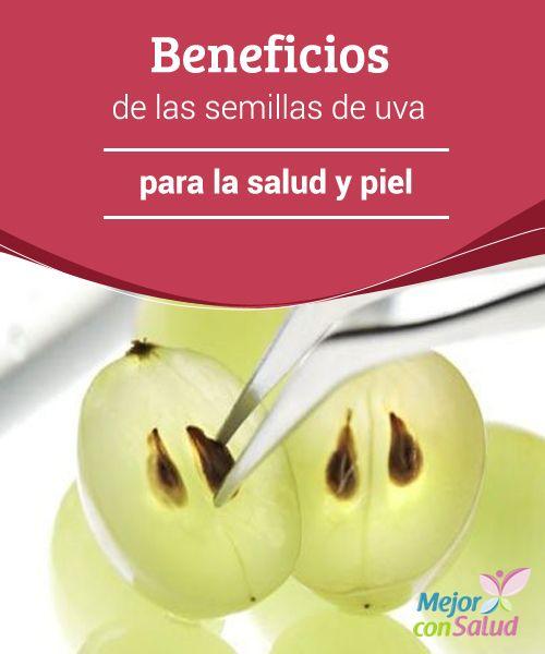 Beneficios de las semillas de uva para la salud y piel  ¿Qué haces con las semillas de uva? ¿Eres de los que las tiran o las comes con la fruta? Mucha gente opta por desecharlas por su sabor amargo.