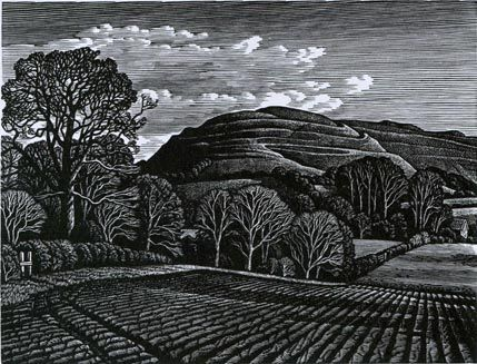 Howard Phipps - Hambledon Hill 429×327)