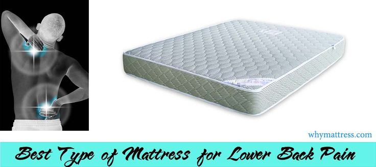 42 Best Mattress For Lower Back Pain Images On Pinterest