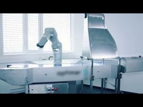 DENSO robot cutting fish - New VS IP67 (video explanation in English below) - YouTube
