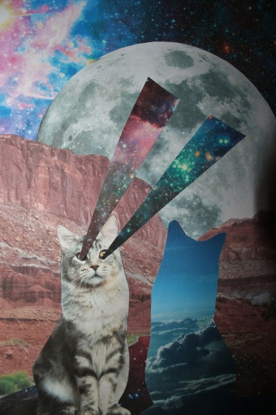 Cats space