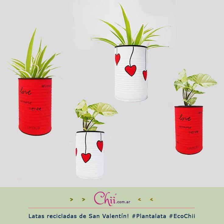 En #SanValentín también reciclamos!   #EcoChii #Plantalata   http://chii.com.ar/14-eco-chii