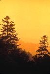 The Great Smoky Mountains. Yes, this is where the Univ. of Tennessee gets her orange. The sunset over the mountains.