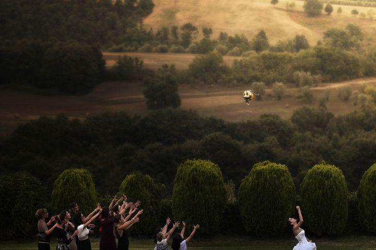 Свадебный фотограф Gianluca Adami (gianlucaadami). Фотография от 12.09.2016