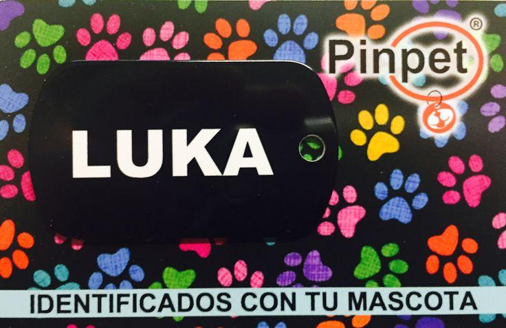 Placa unicolor para mascotas de Pinpet.