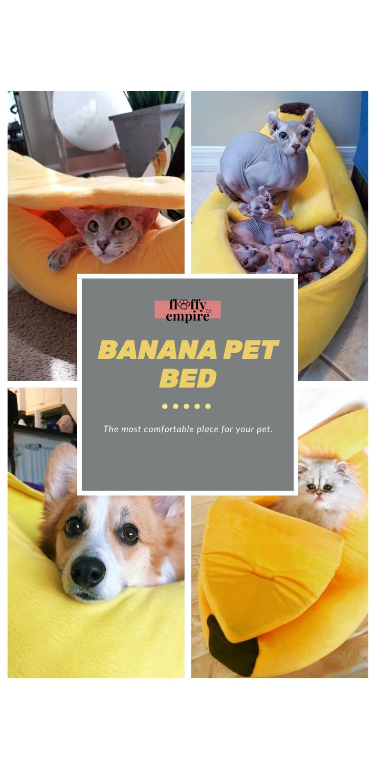 Banana Cat Bed. Provide your beloved cat with a place for
