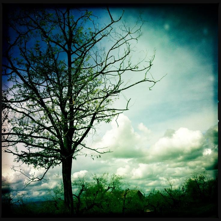 ...nuvole a san marco