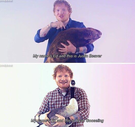 So much awesome! Lol Ed Sheeran