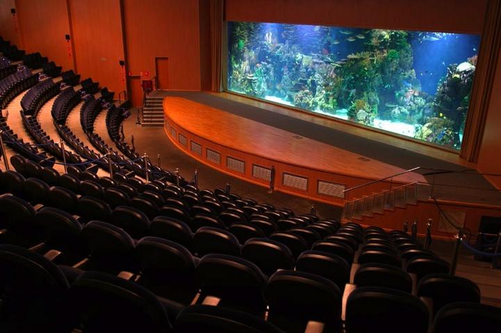 El Auditorio Mar Rojo