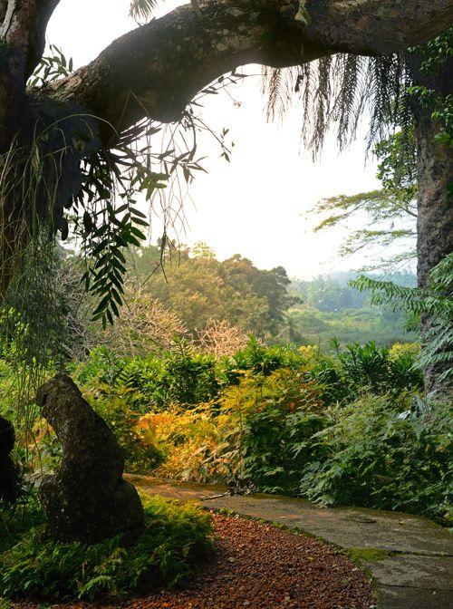 Brief Gardens, Bentota, Sri Lanka