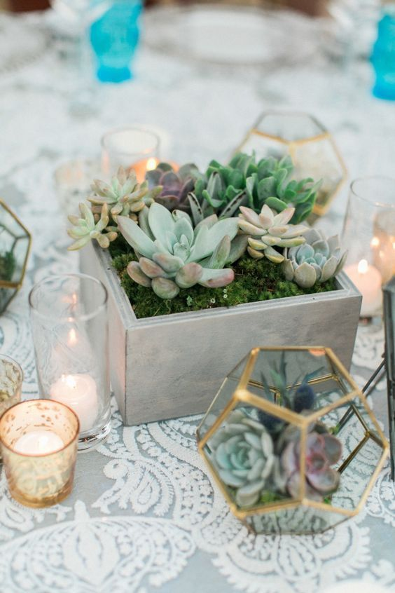 Industrial yet super chic, modern geometric terrarium and concrete wedding decoration