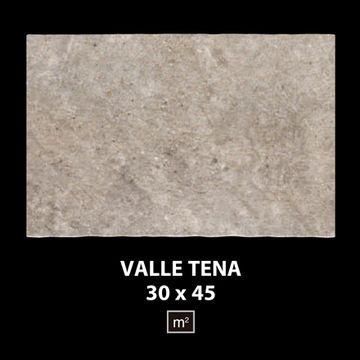 Valle_Tena