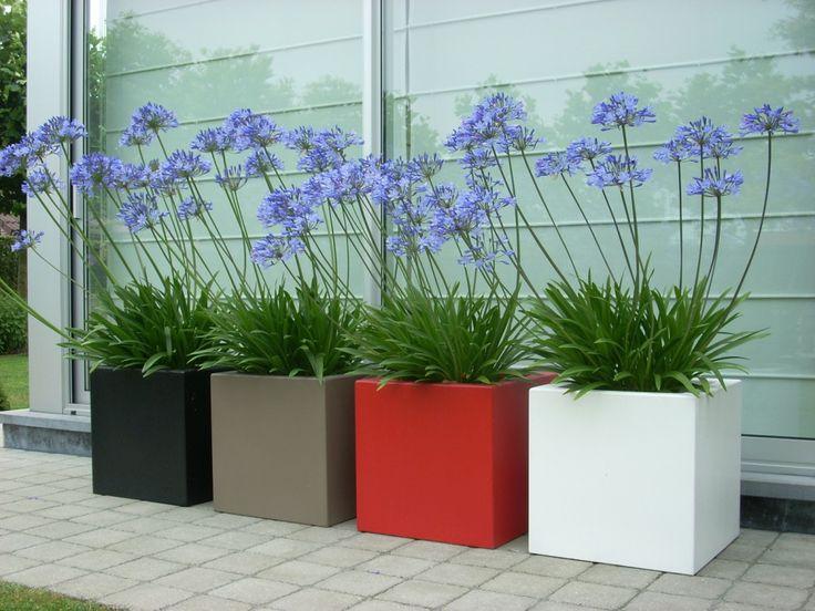 Kwiaty jednoroczne, ale donice - na pokolenia ;)  #Flowers #Plants #Planters #Light #Mobile #Design #Modern